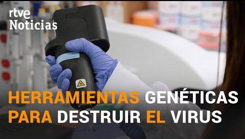 La INVESTIGACIÓN ESPAÑOLA contra el COVID-19 del CSIC | RTVE Noticias